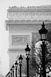 La Alianza Francesa Iniciará Cursos