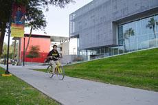 Ley ciclismo será una medida sustentable