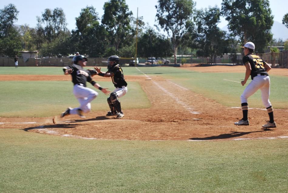 CETYS Tijuana estrenará categoría de beisbol en octubre