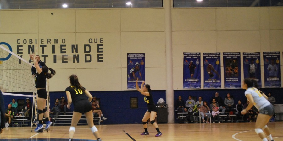 CETYS Universidad - Voleibol