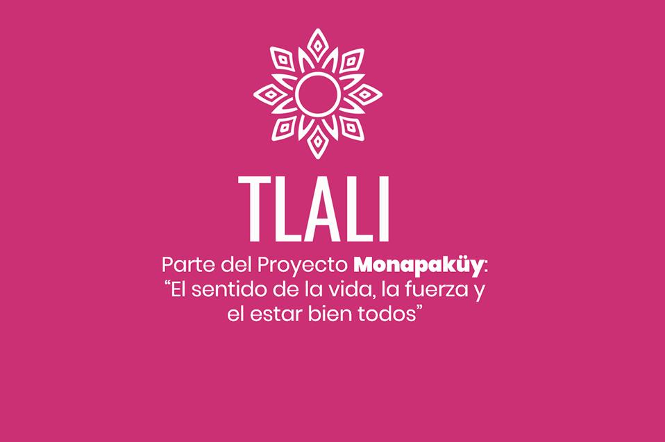 """Ayudan a comunidades indígenas a emprender con el proyecto """"Tlali"""""""