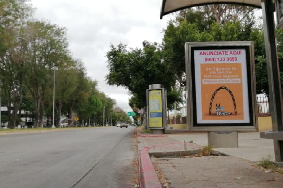 Estudiantes de CETYS fueron finalistas en concurso de sensibilización social en Tijuana