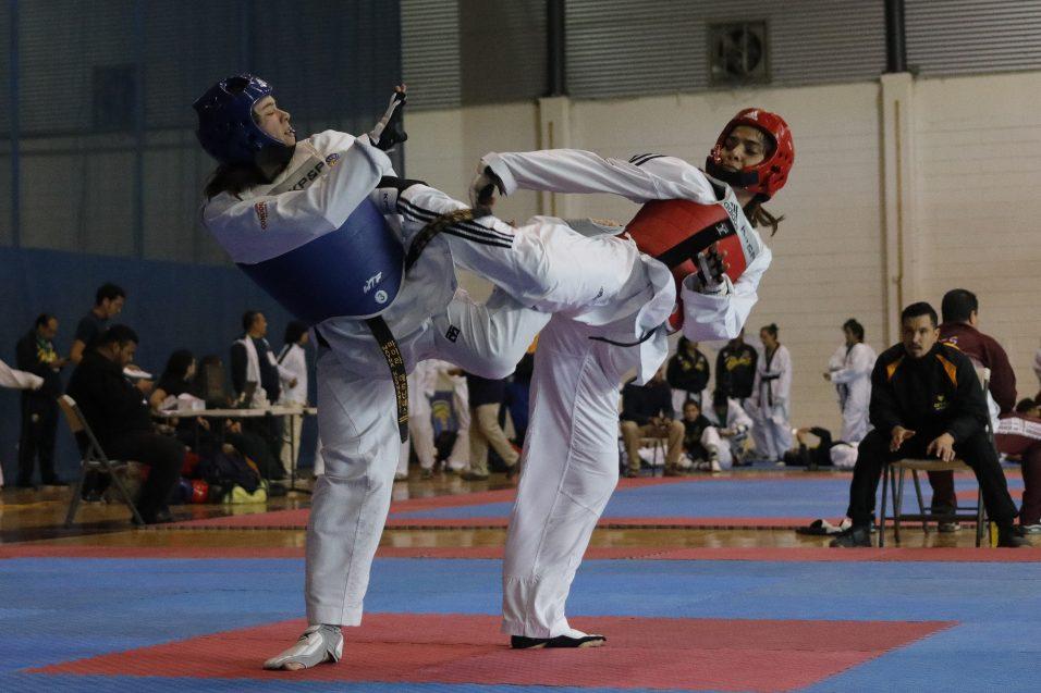 Impulso al Taller de Taekwondo ante el Modelo CETYS Flex 360°