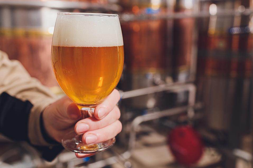 La importancia de la fermentación para la obtención de bebidas de calidad