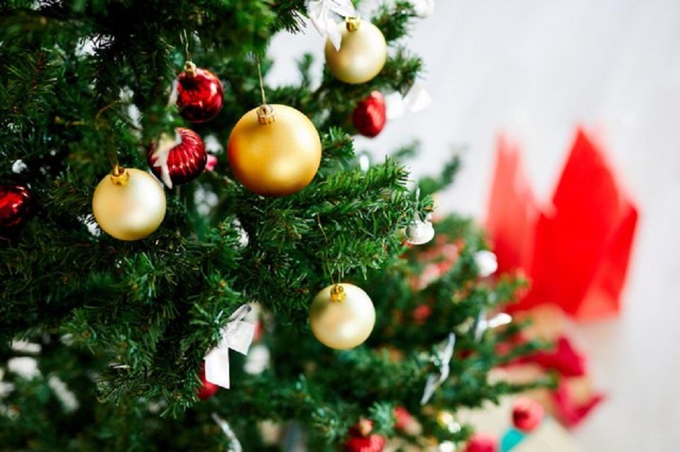 El dilema del árbol navideño: ¿existe una opción realmente eco-friendly?