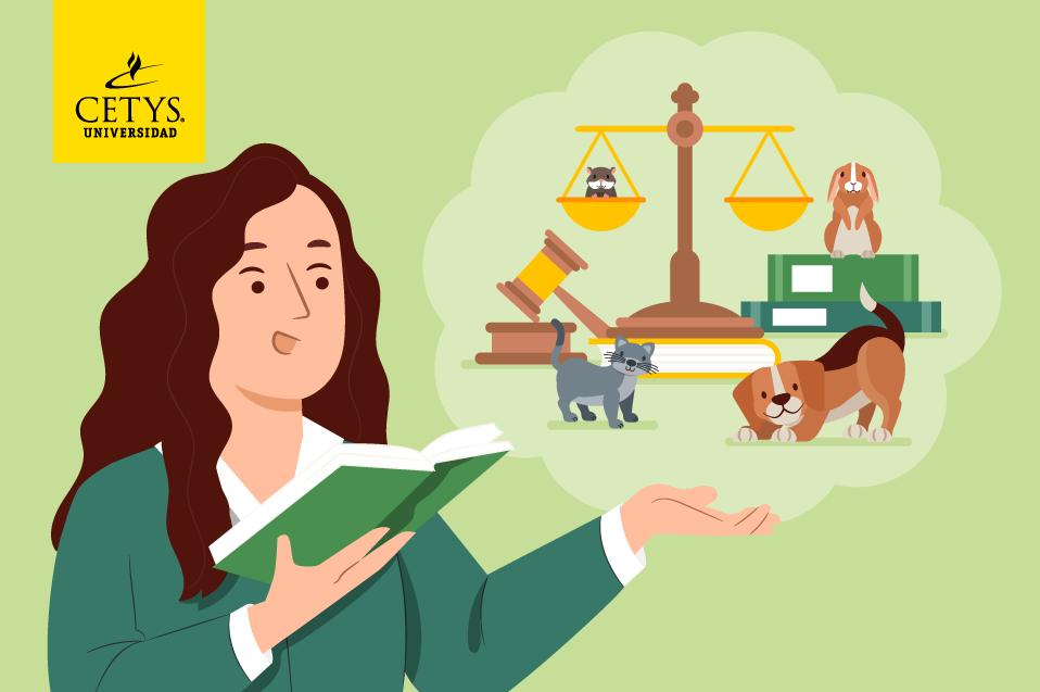 ¿Qué hace falta en materia de derecho animal en México?