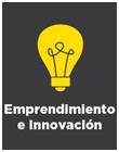Elemento Distintivo: Emprendimiento e Innovación