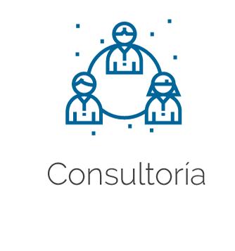 Logo y título de Consultoría
