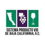 Sistema-Producto-Vid-de-BajaCalifornia-1
